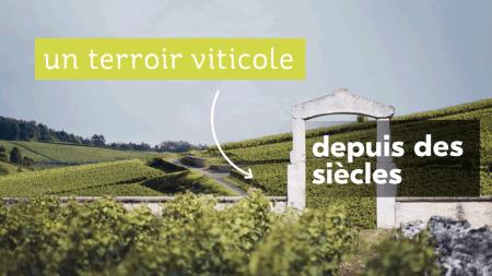 Climats de Bourgogne – Elearning interactif