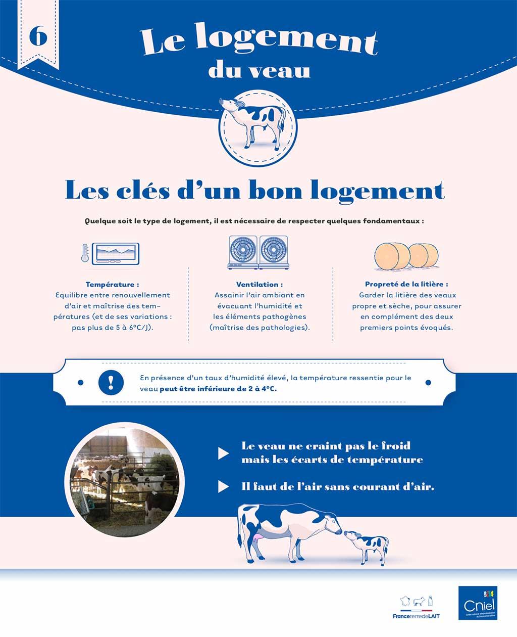 cniel infographie logement du veau